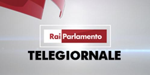 Unione italiana del lavoro politiche fiscali e for Parlamento rai